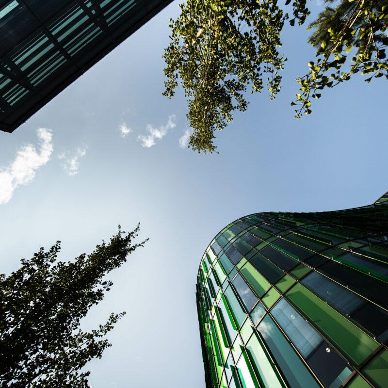 Blå himmel med två byggnader och trädkronor