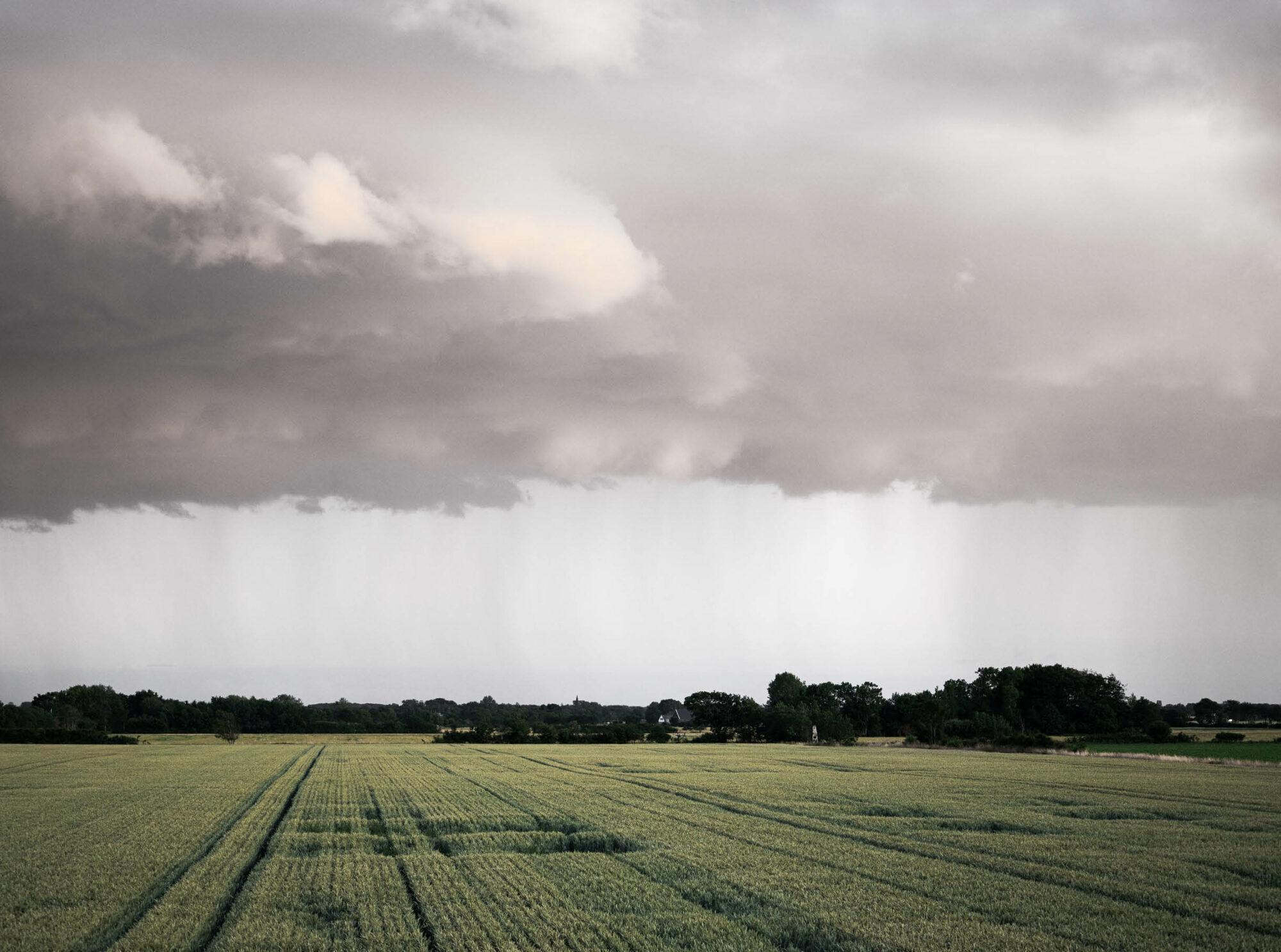 Bild över en äng med stora tunga moln