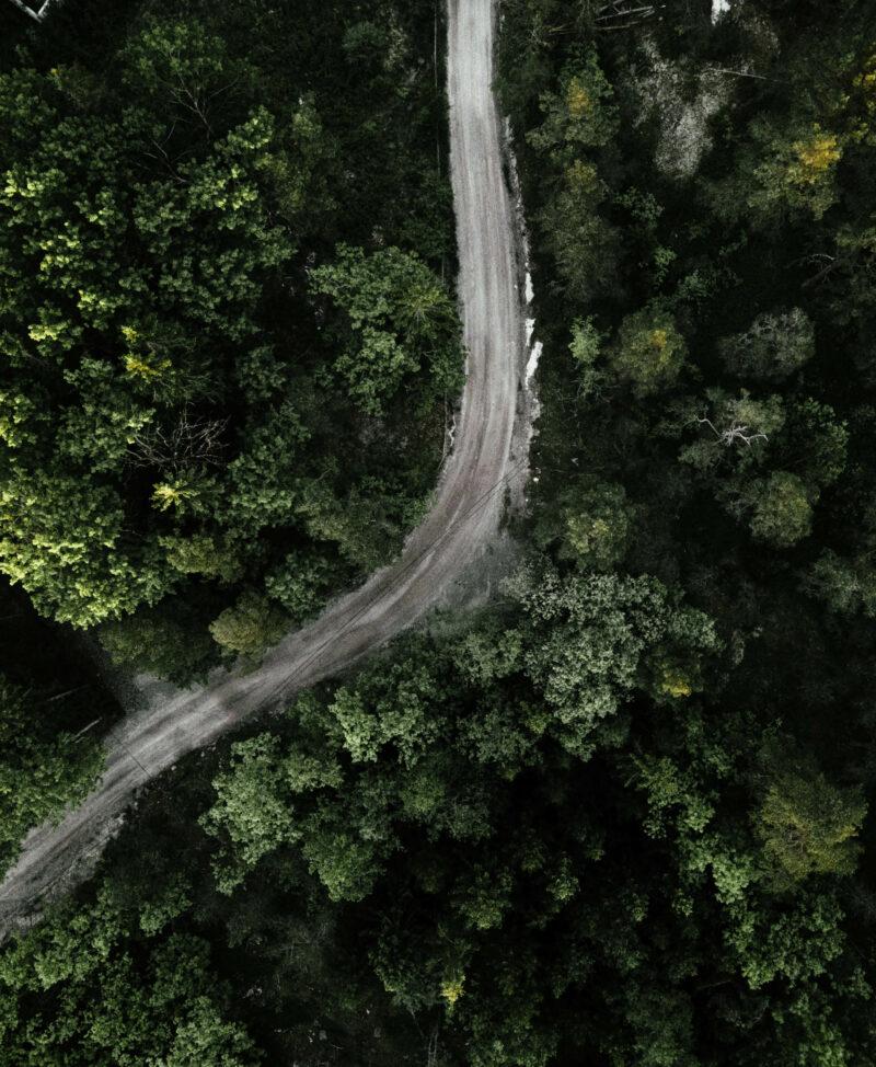 Drönarbild över skog
